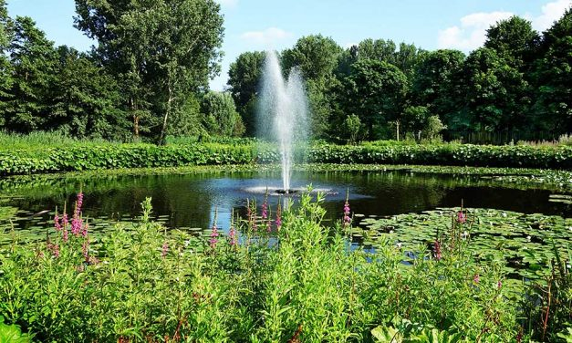 Benefits of Pond Fountains
