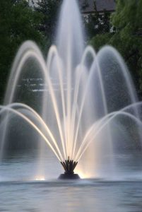 sophisticated pond fountain