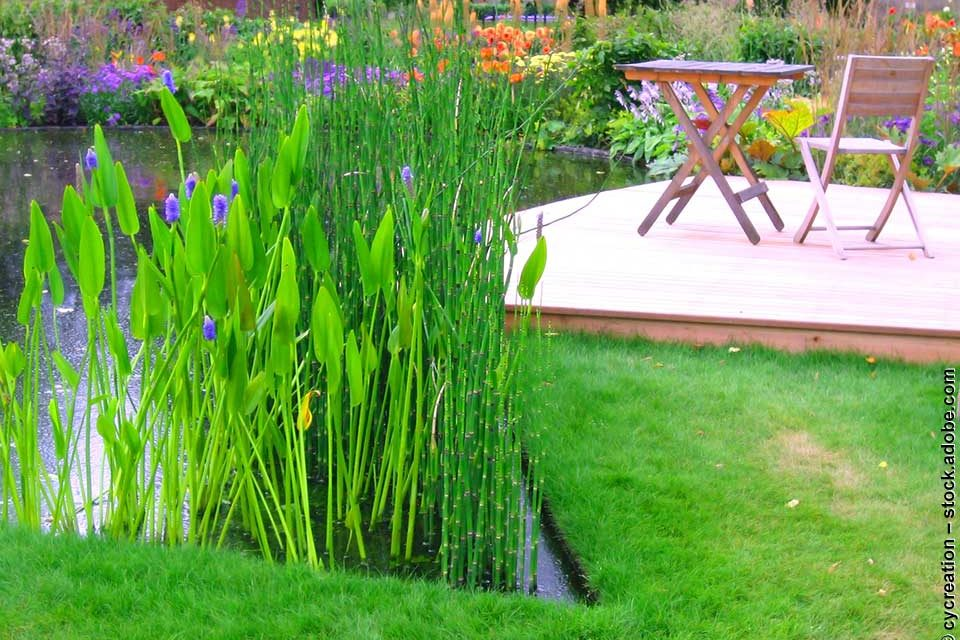 Garden Pond Design Ideas for your Inspiration